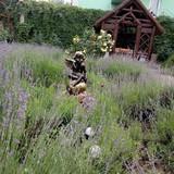 """Изображение гостевого дома """"Гостевой дом """"Поляна сказок"""""""" #40"""