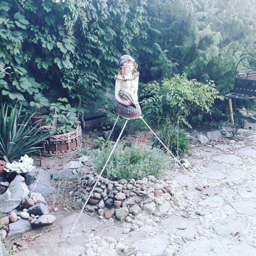 """Изображение гостевого дома """"Аля-Фазенда)"""" #19"""
