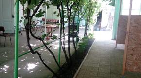 Тихий дворик