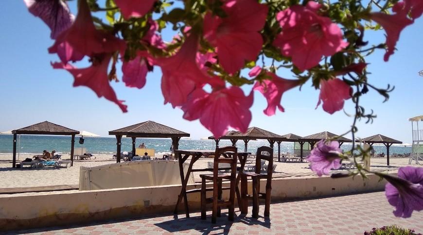 """Изображение пансионата """"Oasis Beach Club"""" #7"""
