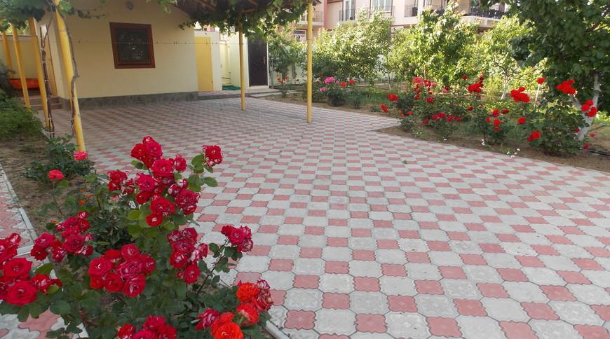 """Изображение гостевого дома """"Сдам Загородный дом на берегу Черного моря, в Затоке"""" #15"""