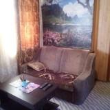 """Изображение гостевого дома """"Срібні Лелеки"""" #46"""
