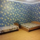 """Изображение гостевого дома """"Срібні Лелеки"""" #48"""
