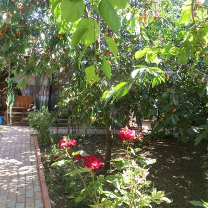"""Изображение мини-отеля """"Зеленый дворик"""" #5"""