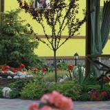 """Изображение гостевого дома """"Villa Bavaria"""" #29"""