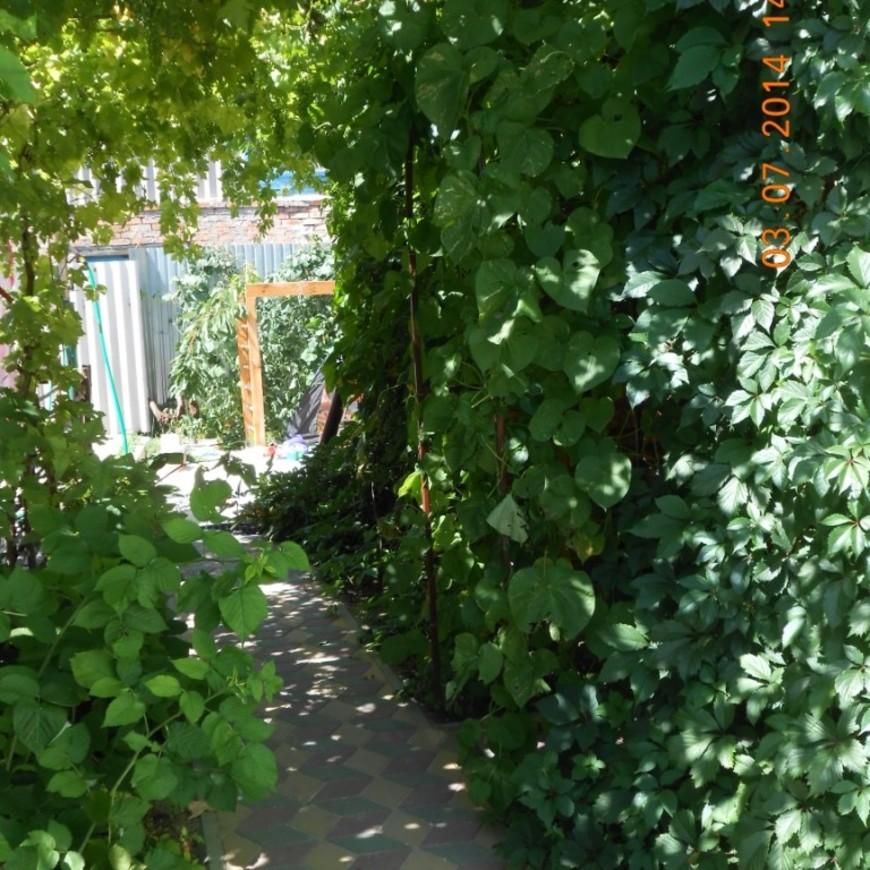 """Изображение апартаментов """"у Оксаны"""" #1"""