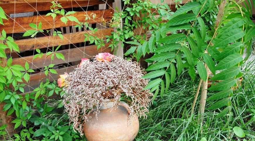 """Изображение гостевого дома """"Гнездо Аиста"""" #6"""