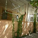 """Изображение гостевого дома """"Мира"""" #27"""