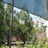 """Изображение гостевого дома """"Морская звезда"""" #13"""