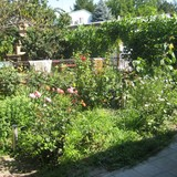 """Изображение пансионата """"Зеленый дворик"""" #19"""