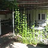 """Изображение пансионата """"Зеленый дворик"""" #21"""