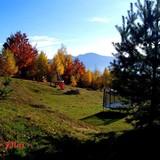 """Изображение гостевого дома """"Rakhiv Plai"""" #20"""