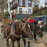 """Изображение отеля """"Aspen Village"""" #35"""