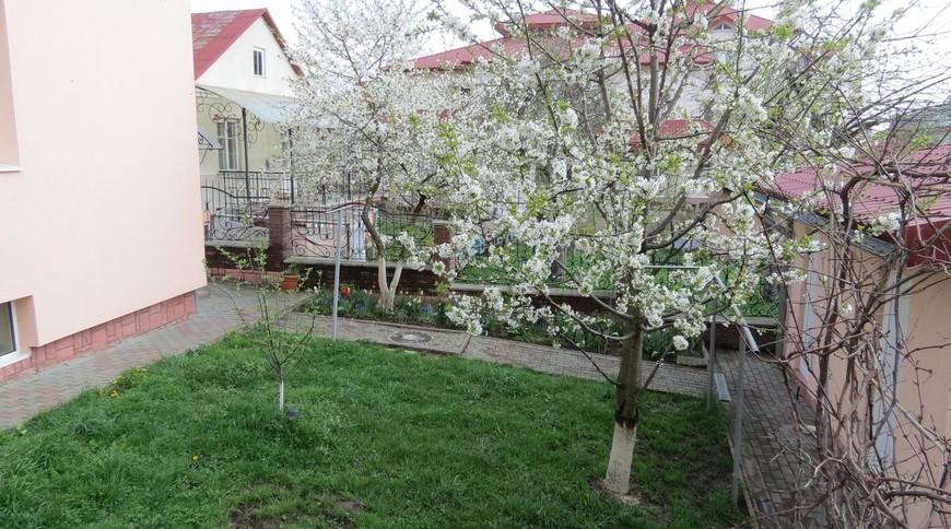 """Изображение гостевого дома """"Green Hill"""" #10"""