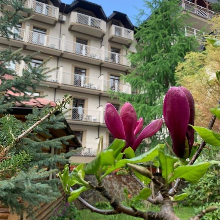 """Изображение отеля """"Романтик"""" #11"""