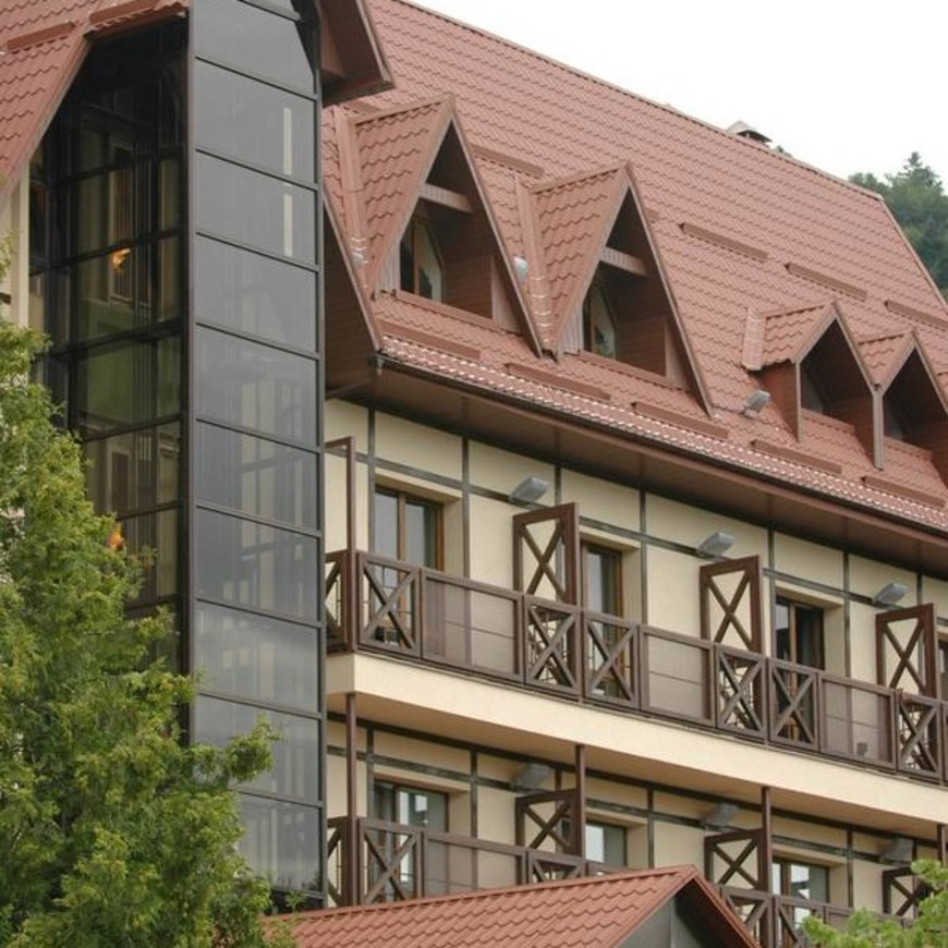 """Изображение отеля """"Эдельвейс"""" #13"""