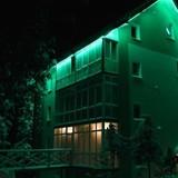 """Изображение отеля """"Зеленая Дача"""" #15"""