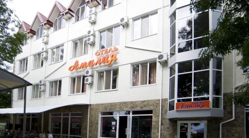 """Изображение отеля """"Амалия"""" #1"""