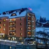 """Изображение отеля """"Alpin Hotel"""" #34"""
