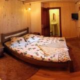 """Изображение отеля """" Dacia"""" #24"""