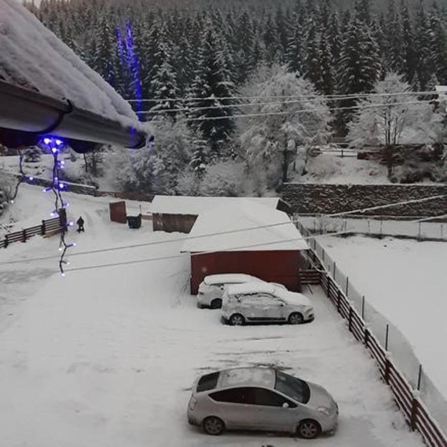 """Изображение отеля """" Dacia"""" #15"""