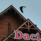 """Изображение отеля """" Dacia"""" #36"""