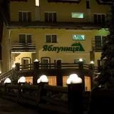 """Изображение отеля """"Яблуница"""" #12"""