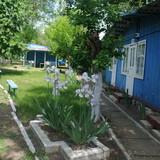 """Изображение базы отдыха """"Молдова"""" #9"""