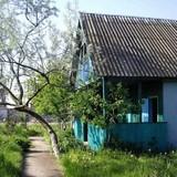 """Изображение базы отдыха """"Беларусь"""" #12"""