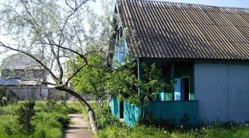 """Изображение базы отдыха """"Беларусь"""" #6"""