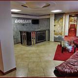 """Изображение отеля """"Горганы"""" #13"""