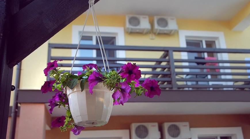 """Изображение отеля """"МореЛета"""" #14"""