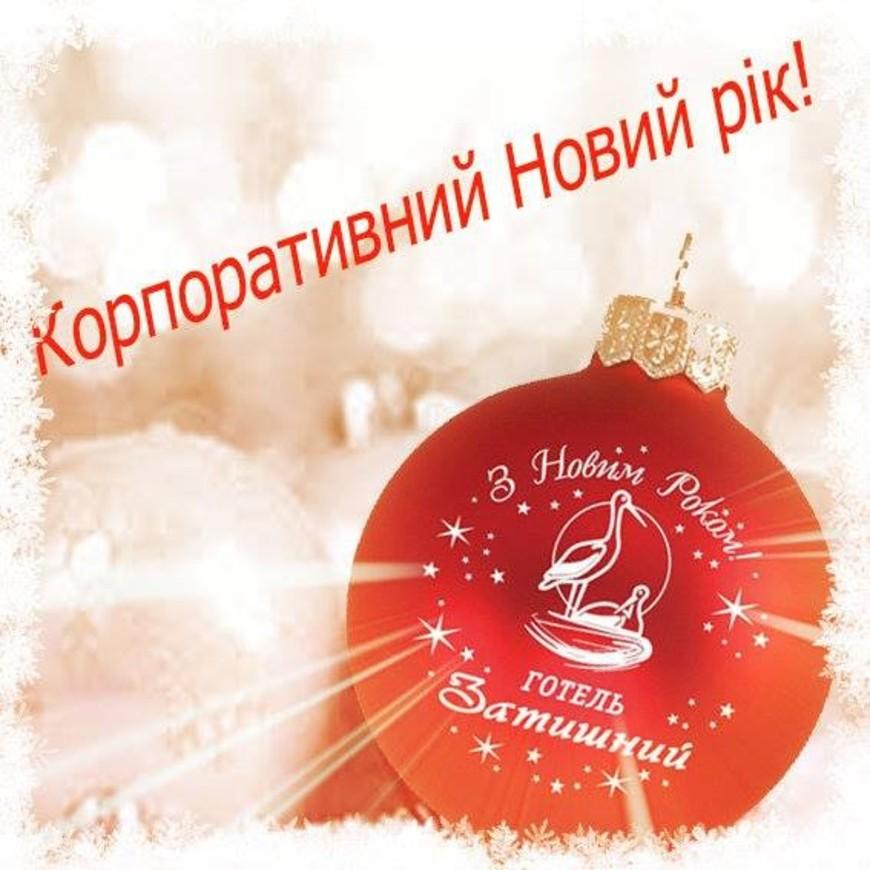 """Изображение отеля """"Затышный"""" #57"""